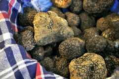 Black truffle Stock Photo