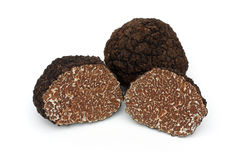 Black truffle royalty free stock photos