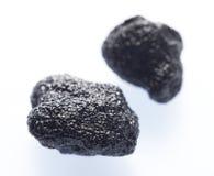 Black truffle Stock Image