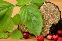 Black truffle close up Stock Images