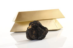 Black Truffle and gold bars Royalty Free Stock Images