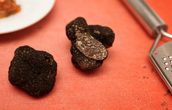 Black truffle mushroom Royalty Free Stock Image