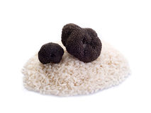 Black truffle over raw rice on Stock Photo