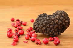 Black truffle and red pepper Royalty Free Stock Photo