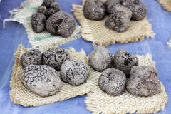 Black truffle Stock Image