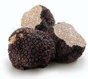 Black truffles stock photography