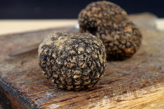 Black truffles stock images