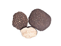 Black truffles Stock Images