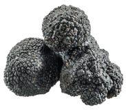 Black truffles. Stock Photo