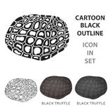 Black truffles icon   Stock Photography