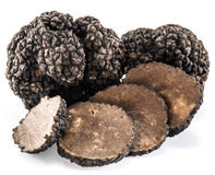 Black truffles isolated on a white. Stock Images