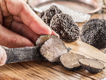 Black truffles. Black truffles on the old wooden table stock photography