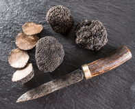 Black truffles and truffle slices on a graphite board. Black truffles and truffle slices on the graphite board royalty free stock image