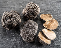 Black truffles and truffle slices. Royalty Free Stock Images