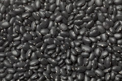Black turtle beans Royalty Free Stock Images