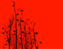 Black twigs background Royalty Free Stock Images