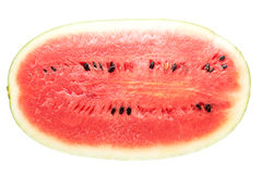 Black Tyrant King Super Sweet Watermelon. Top view on White background royalty free stock images