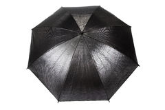 Black Umbrella Royalty Free Stock Image