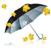 Black umbrella with falling leaves Stock Photography