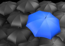 Black Umbrellas with Single Blue Umbrella. Background of black Umbrellas with and Individual Blue brightly colored umbrella standing out Stock Image
