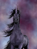 Black Unicorn. The Unicorn was a mythical creature which was a horse with a horn on its forehead and had amazing powers Stock Photography