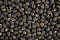 Black urad dal bean lentils texture background Royalty Free Stock Image