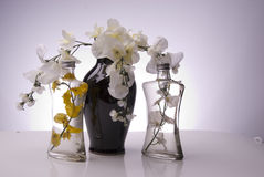 Black vase with clear bottles and flowers Stock Images