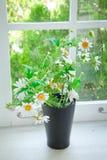 Black vase and flower Stock Images