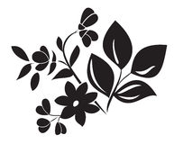 black vector element of plant for design Stock Image