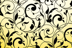 Black vintage ornament on white and yellow gradient. Background Stock Photos