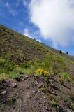 Black volcanic land on Vesuvius volcano in Italy Royalty Free Stock Image