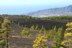 Black volcanic landscape at the isle of La Palma, Spain Stock Images