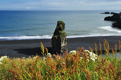 Black volcanic sand beach at Dyrholaey, Iceland. View of coast of Dyrholaey, Iceland Stock Images
