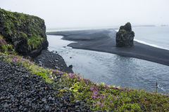 Black volcanic sand on south coast of Iceland Stock Image