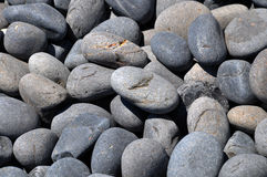 Black volcano pebble. Close image from beach Royalty Free Stock Photography