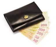 Black wallet and Euro banknotes isolated on white. Composition with black wallet and Euro banknotes isolated on white Royalty Free Stock Photo