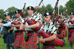 Black Watch Pipes and Drums Stock Images