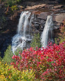 Black water falls in fall Stock Photos