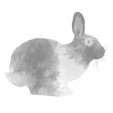 BLACK WATERCOLOR RABBIT. Can be used by many companies Royalty Free Stock Photos