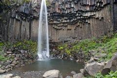 Black waterfall Svartifoss Iceland Royalty Free Stock Images