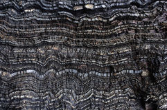 Black wavy layers of rock. Texture of wavy layers of black rock Royalty Free Stock Photos