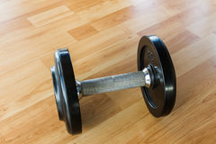 Black Weights dumbbells. Stock Image