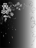 Black and white abstract background. Abstract background made of black and white flowers Royalty Free Stock Photo