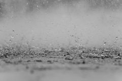 Black white abstract background raindrop on the ground. Black white abstract background raindrop on the ground Stock Photo