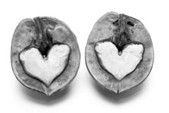 Black and white photo with nuts in shape of hearts on white background royalty free stock images