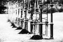 Black and white abstract. Standing at the edge of the field in the winter of decorative columns Royalty Free Stock Photo