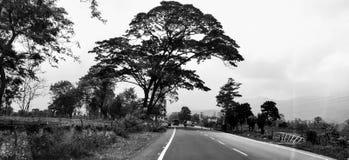 Black&White stock afbeelding