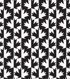 Black and white alternating maple leaves half and half Royalty Free Stock Photography