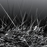 Black and white amorphous texture with random elements. Messy, c Stock Images