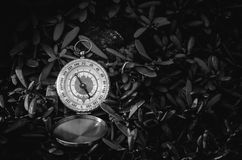 Black and white analogical compass abandoned on grass Stock Photography